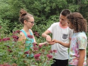 "Prep Cook Pax teaches Frank and Devi about ""Bee Balm"" the flower that Earl Grey tea is made from."